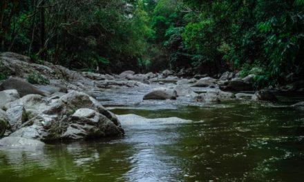 Cara Sederhana Menyelamatkan Sumber Mata Air