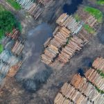 Kerusakan Hutan di Pulau Jawa