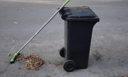 Sampah Organik – Pengertian, Jenis, Pengelolaan, dan Manfaat