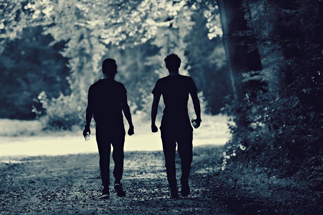 berjalan di hutan