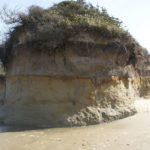 Pengertian Erosi, Penyebab & Dampak Bagi Lingkungan