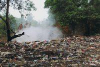 membakar sampah