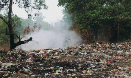 Polusi Tanah – Pengertian, Ciri, Sumber Penyebab, Dampak & Cara Mengatasi