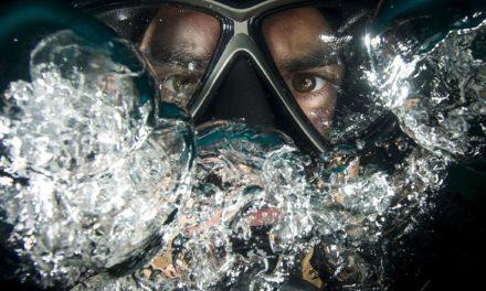 Siklus Oksigen – Pengertian dan Prosesnya