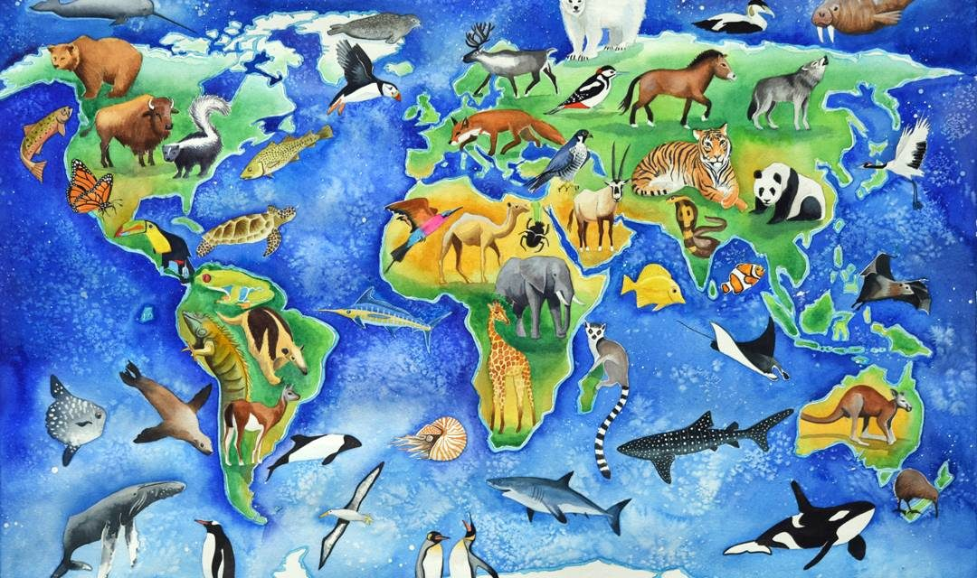 1000++ Daftar Nama Hewan / Binatang Serta Gambarnya