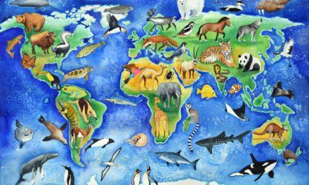 Status Konservasi – IUCN Red List & CITES