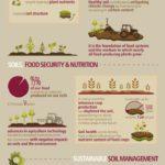 Infografis - Pentingnya Kesuburan Tanah Untuk Kecukupan Pangan