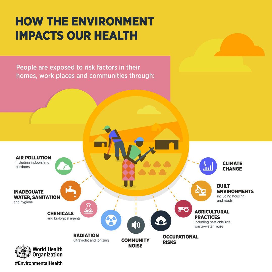 lingkungan mempengaruhi kesehatan