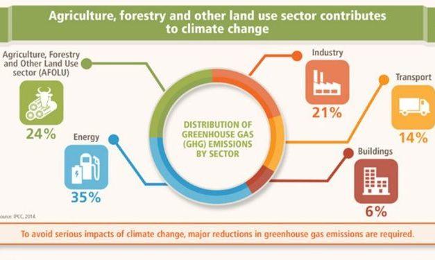 Infografis – 5 Hal Yang Mempengaruhi Perubahan Iklim