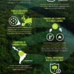 Infografis - Peran Hutan Melawan Perubahan Iklim