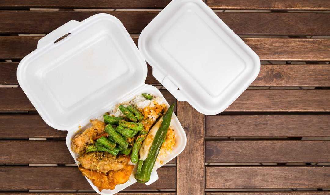 Bahaya Styrofoam Bagi Lingkungan dan Makhluk Hidup