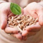 Biomassa - Pengertian, Prinsip, Manfaat & Contoh Energi