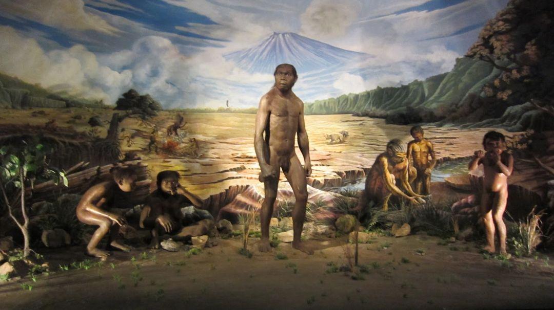 Manusia Purba – Pengertian dan Sejarah di Indonesia