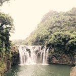 Hutan Konservasi - Pengertian, Jenis, Fungsi & Kondisi