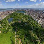 Hutan Kota - Pengertian, Bentuk dan Manfaat