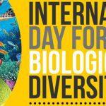Hari Keanekaragaman Hayati Internasional - 22 Mei