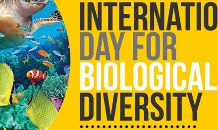 Hari Keanekaragaman Hayati Internasional – 22 Mei