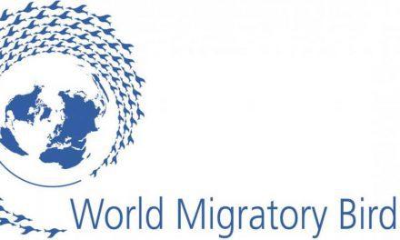 Hari Migrasi Burung Sedunia – 10 Mei