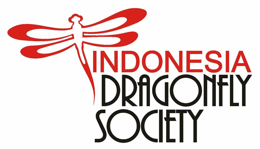 indonesia dragonfly society