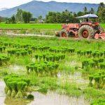 Alat Pertanian Modern - Petani Lebih Efektif, Efisien & Produktif