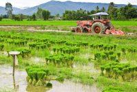 pertanian modern