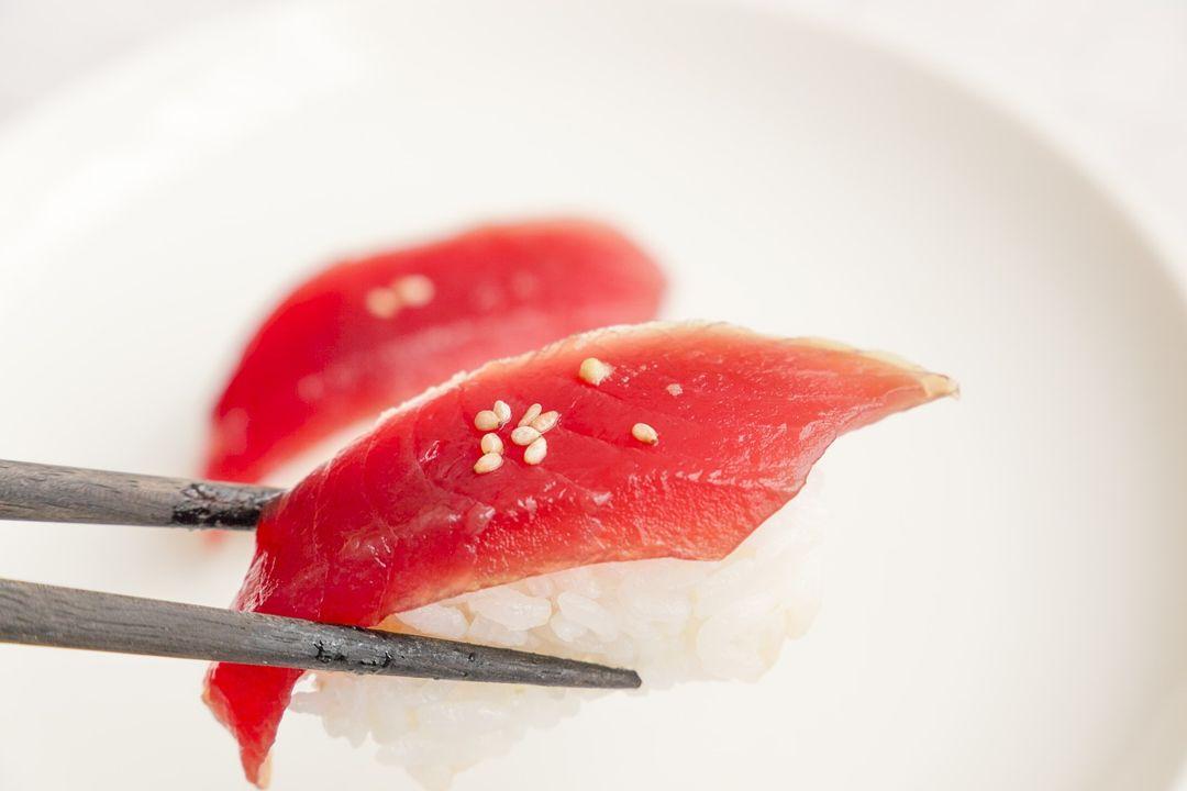 sushi ikan tuna