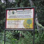 Taman Nasional Bukit Barisan Selatan - Flora Fauna & Tujuan Wisata