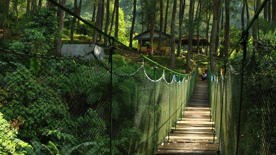 canopy trail halimun salak