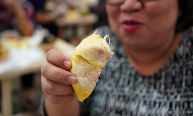Durian Tanpa Duri – Varietas Unggulan Asli Kaki Gunung Rinjani