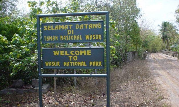Taman Nasional Wasur – Kekayaan Alam di Timur Papua