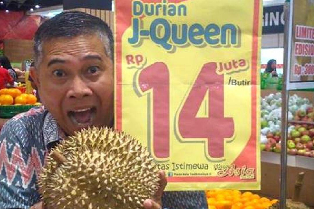 durian j queen