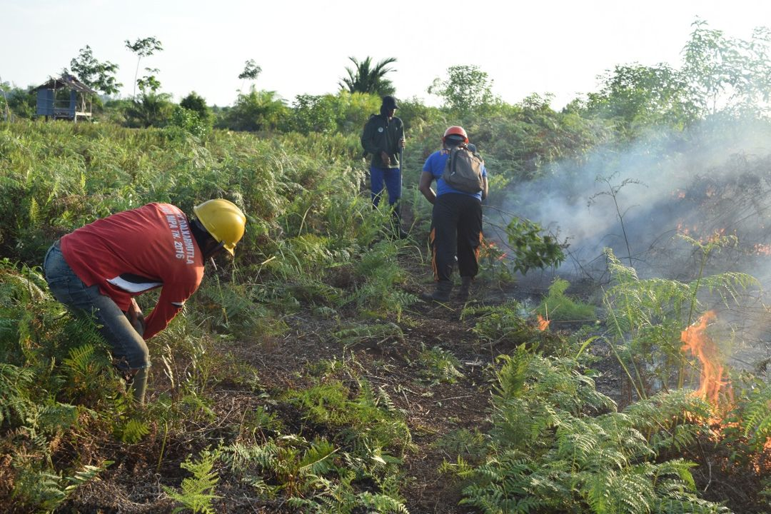 mencegah kebakaran hutan