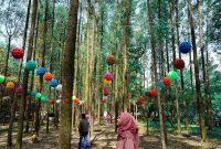 hutan kertas karawang