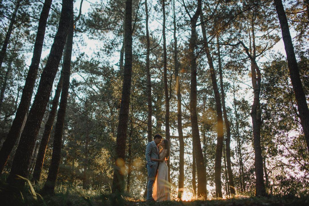pre wedding di hutan