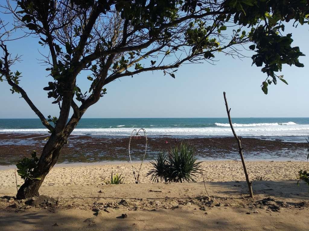 wisata pantai watu kodok