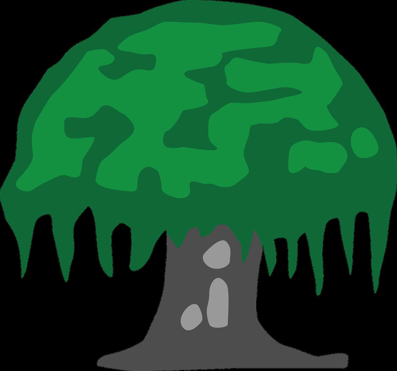 Gambar Pohon Beringin