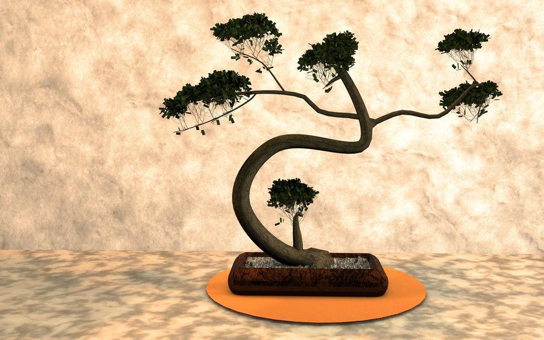 bonsai unik