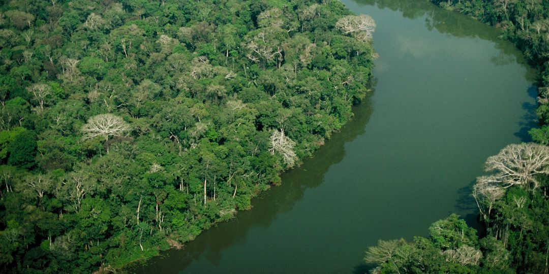 sungai jurua