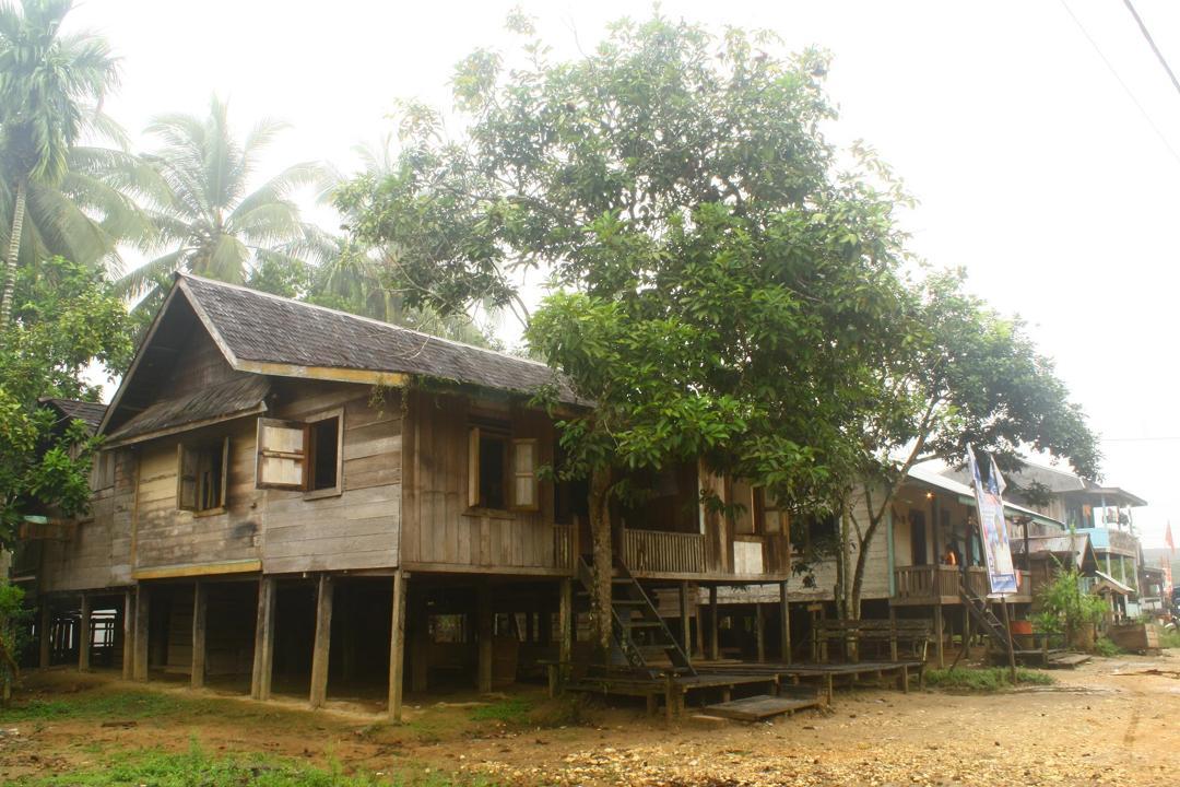 rumah suku wehea
