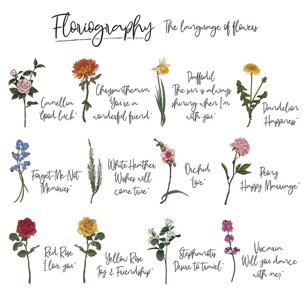 Bunga Pengertian Bagian Fungsi Morfologi Proses Manfaat Makna Filosofi